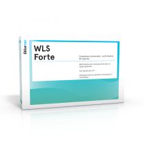 WLS Forte N45